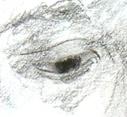 bigeye.jpg