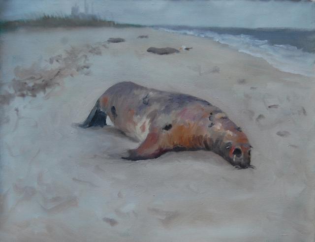 dead_seal